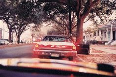 "WILLIAM EGGLESTON: ""The Tender-Cruel Camera"" - ASX 