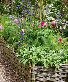 voorin tuin https://www.bakker.com/nl-nl/p/bloemenborder-met-kruiden-M52796