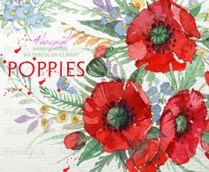 Poppies Watercolor Clipart Wedding Bouquets by FLORISTKA on Etsy