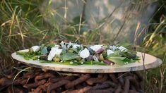 En färggrann kreation med bondbönor och ärter. Succulents, Plants, Food, Meals, Succulent Plants, Plant, Yemek, Planting, Eten