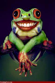 Google Image Result for http://4.bp.blogspot.com/-ZgxBUl0uLT0/T5lSibaGBDI/AAAAAAAAMS4/_rknm_eN8hE/s1600/Mutant-Frog-33331.jpg