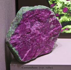 Smithsonian 8-10-09 - 069 by Orbital Joe, via Flickr