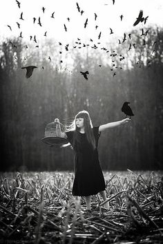 She went to the field to release the birds within her...she found the crows of thoughts fly...many more than she intended.