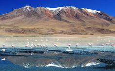 Altiplano Andino, Bolívia