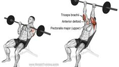 Incline reverse-grip barbell bench press