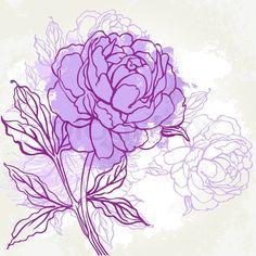 3094291-beautiful-peony-design-on-beige-background-hand-drawn-vector-illustration.jpg 800×800 pixels