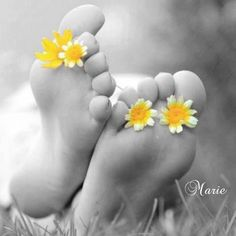 Relaxation in the park daisies on the feet Marie