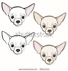Image result for how to draw a chihuahua