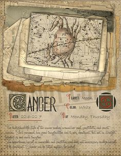 7 pages set about CANCER Astrological Sign Correspondences. They are an ideal addition to your own Wicca Book of Shadows. Astrology Zodiac, Astrology Signs, Astrological Sign, Cancerian, Taurus And Gemini, Zodiac Star Signs, Wiccan, Wicca Witchcraft, Moon Child