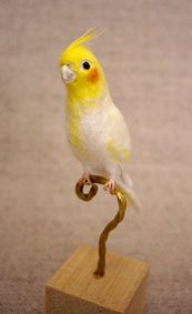 *NEEDLE FELTED ART ~ 宙の小箱:So-netブログ Needle Felted Animals, Felt Animals, Cockatiel Care, Needle Felting Tutorials, Spinning Yarn, Felt Birds, Nuno Felting, Felt Hearts, Felt Toys