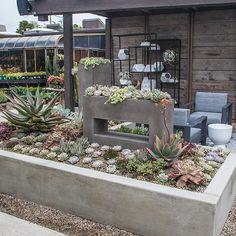 modern-4 Rogers Gardens, Colorful Garden, Enjoy It, Modern Spaces, Garden Styles, Garden Inspiration, Modern Farmhouse, Succulents, Landscape