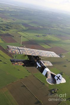 I would have a full size Fokker DVII hanging on the wall above the fireplace.