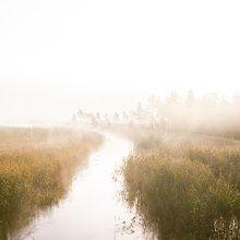 Fototapet - River of Dreams