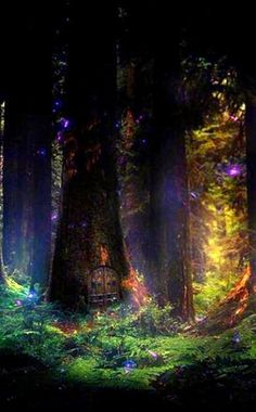 The Mystic Glen, home to the fairy's, leave all thoughts of anger and hatred at the trail head. For this is the place of peace, love and beautiful magic. ~bl~.../