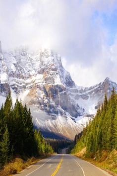 Highway 93 North, Icefields Parkway, Alberta, Canada. wouldn't mind visiting in the fall or winter, so pretty.