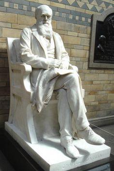 Charles Darwin, Charles Darwin's sculpture at London's Natural History Museum.  Joseph Edgar Boehm