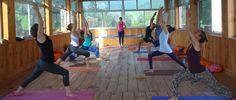 Ajarya Yoga Academy Rishikesh #ajaryayogaacademy #ajaryayogaacademyrishikesh http://yogacentersindia.com/ajarya-yoga-academy-rishikesh/