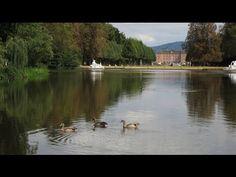 Burgen, Schlösser und mehr im Odenwald https://youtu.be/jfPEIx9zf5s #deutschland #urlaub #ttot #germany #travel