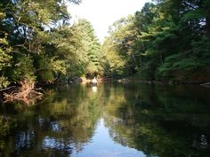 A great place to Kayak and renowned for Fly Fishing!!  Swift River, Belchertown, MA