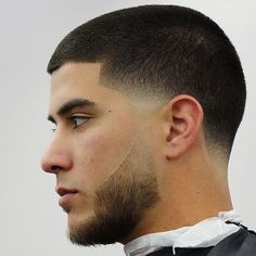Buzz Cut with Line Up and Temple Fade Neck Taper