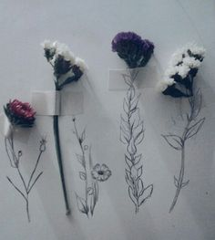 draw, flowers, grunge, tumblr