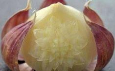 Honeydew, Beauty Secrets, Fruit, Health, Tips, Food, Onions, Cottage, Jars