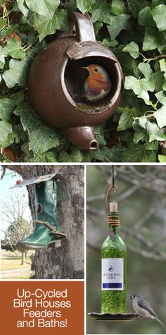5 Fun Up-Cycled Bird Houses, Feeders and Baths. Must make one so our hummingbirds come by more often.