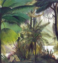 Paysages 200x220 - Les sources de l'Orénoque couleur Panneau L200xH220 cm - 2 lés de 100 cm - Ultra mat