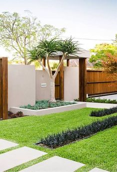 Modern fence (Adding Curb appeal to any place) Raise the Value of your home today - Real Palm Trees - with plants and palms - Luxurious Outdoor LIving #Ideas # #REalPalmTrees - 1888-778-247six RealPalMTrees.com