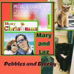 May all the beauty and blessings this Christmas season has to offer be with you and your family. Happy Christmas to you all! With Love! :) #loveinchristmas #maryandlaz #merrychristmas #pebblestime #blackee #petstime #feliznavidad