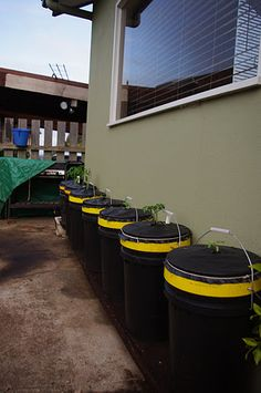 Recycled Buckets from the Housing Estates