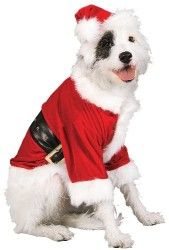 Rubies Costume Christmas Collection Pet Costume Santa Claus  Large
