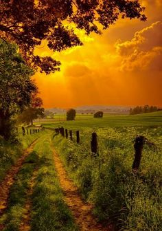 =>I adore this finest nature landscape photography. Beautiful Sunset, Beautiful Places, Beautiful Pictures, Stunningly Beautiful, Beautiful Scenery, Cenas Do Interior, Country Life, Country Roads, Country Living