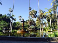 Will Rogers Memorial Park in Beverly Hills, CA