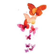 Tattly temporary watercolor tatoos - coral butterflies