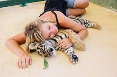 Thailand Part Two \ Phuket, Maya Bay, Koh Pi Pi, Monkey Beach, Tigers   Elephants…oh my!
