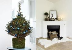 christmas,,,see tree pot DIY moss by maura
