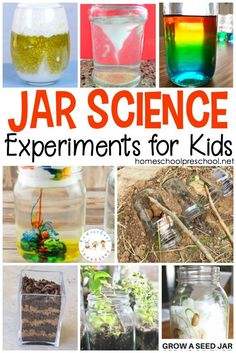 Engage your preschoolers this summer with one or more of these jar science experiments! Easy science experiments for young learners! #homeschoolprek #scienceinajar #scienceexperiments #preschoolscience #prekscience   https://homeschoolpreschool.net/jar-science-experiments/