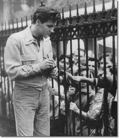 Elvis outside gates at Graceland
