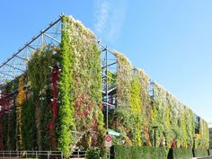 Brother Park Oerlikon ShiftN - Category: O-Park - Wikimedia Commons Studios Architecture, Facade Architecture, Sustainable Architecture, Landscape Architecture, Zurich, Green Facade, Living Roofs, Green Park, Pergola With Roof
