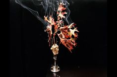 New images from Alinea and Next restaurants food editorial cooking Chicago