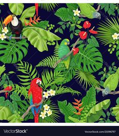 Seamless pattern with tropical birds leaves and falling rain drops on dark background. Colorful parrots and toucan sitting on branches. Rainforest Birds, Tropical Artwork, Jungle Pattern, Colorful Parrots, Drops Patterns, Plant Drawing, Painted Leaves, Tropical Birds, Plant Illustration