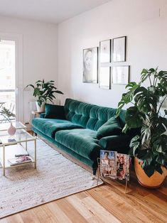 Keep updated with the most recent little living room decoration ideas (chic & modern). Find excellent techniques for getting stylish design even though you have a small living room. Living Room Green, Boho Living Room, Living Room Decor, Cozy Living, Living Rooms, Plants In Living Room, Bohemian Living, House Plants, Living Area