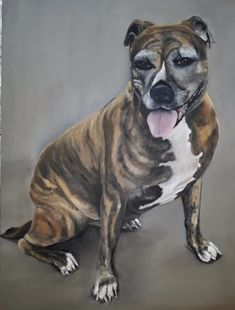 Oil Paintings, Pitbulls, Dogs, Animals, Animales, Animaux, Doggies, Pit Bull, Oil On Canvas