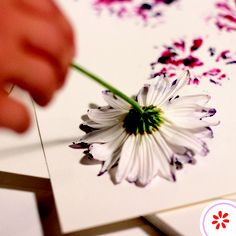 Did you know that flowers also make great paintbrushes? Pick some daisies, and show your kids how to paint with a blossom. (Use a paper plate to help contain the mess.)