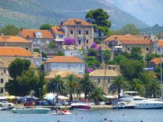 Cavtat, Croatia Croatia Tourism, Where To Go, Wonderful Places, Cavtat Croatia, Adventure Travel, Places Ive Been, The Good Place, Cruise, Around The Worlds