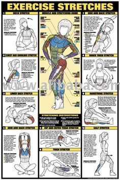 CO-ED Back Workout Professional Fitness Gym Instructional Wall Chart Poster - Fitnus Corp. Fitness Workouts, Fitness Diet, Fitness Motivation, Health Fitness, Health Club, Muscle Fitness, Fitness Games, Fitness Logo, Yoga Fitness
