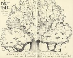 I love drawings of trees. I want to crawl all up in those branches!