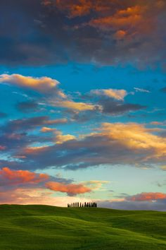 The sentinels  - Tuscany, Italy