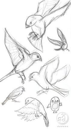 ::: Sketchy Sunday ::: birds | artsy ants